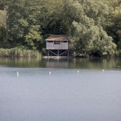 Bergelen gullegem provincie west vlaanderen for Viswater te koop belgie